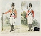 Third Regiment of Foot Guards