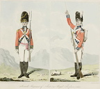 Seventh (Royal Fuzileers) Regiment of Foot