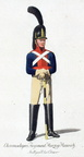 Chevaulegers-Regiment Herzog Heinrich