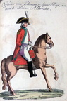 Chevauxlegers-Regiment Prinz Albrecht - Offizier